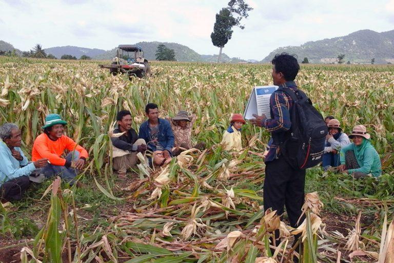 New Project to Combat Malaria in Cambodia